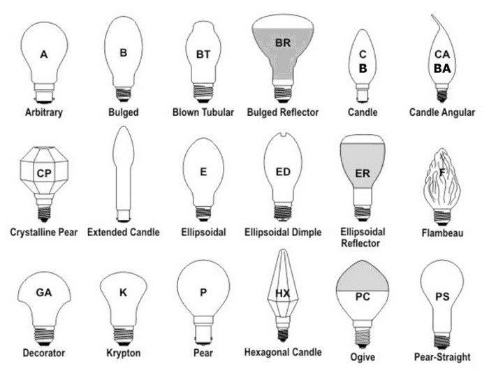 Light Bulb Shapes Types Sizes Identification Guides And Charts In 2020 Bulb Solar Light Bulb Light Bulb