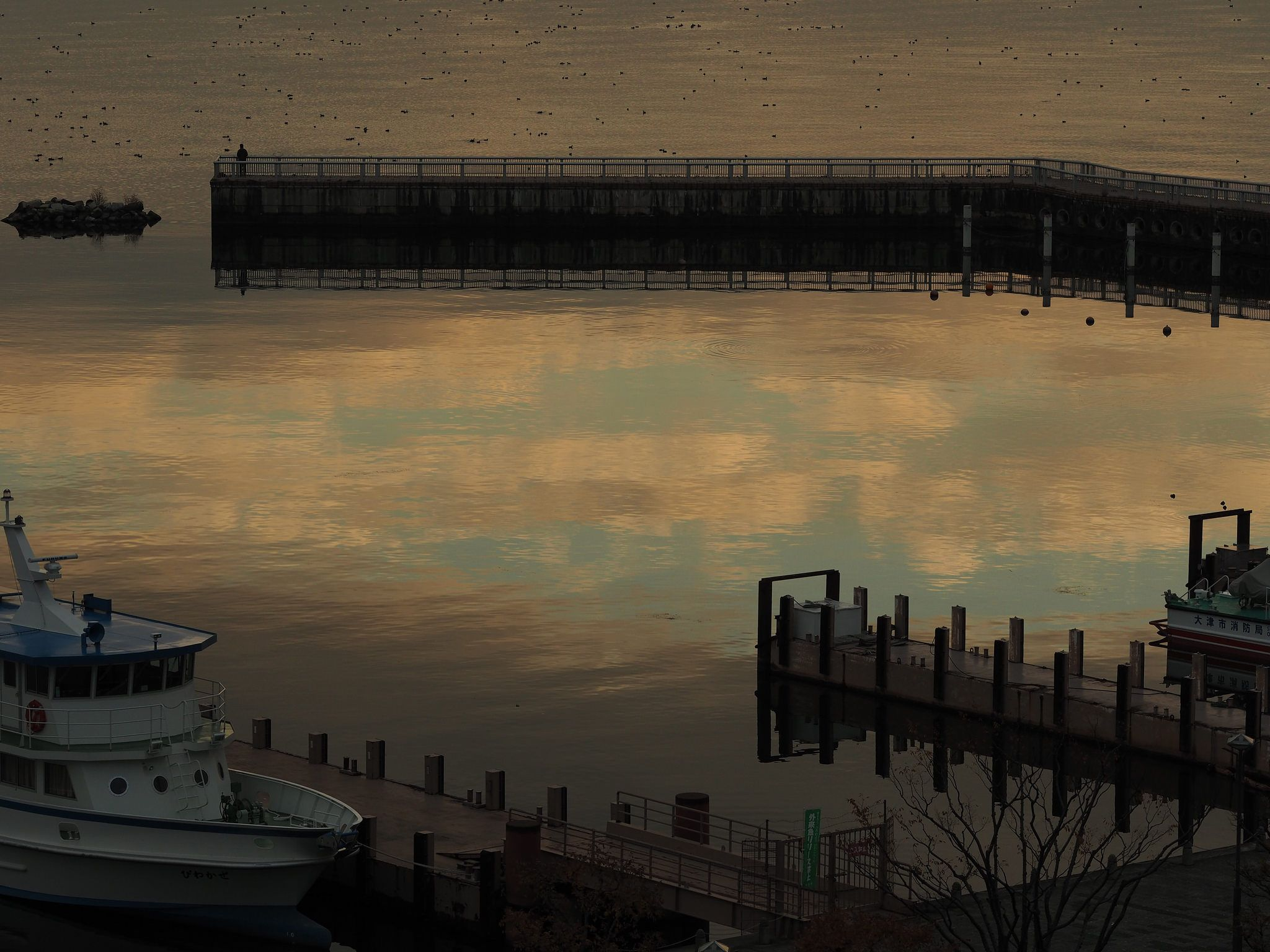 https://flic.kr/p/CMxpxx | Lake Biwa - 琵琶湖の朝 | OLYMPUS DIGITAL CAMERA