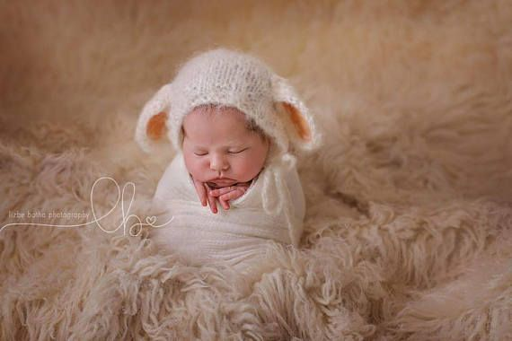 Sitter Photography prop. New Born Photography prop Fox Bonnet 3-6 months Photography prop Knitted Fox Photography Props