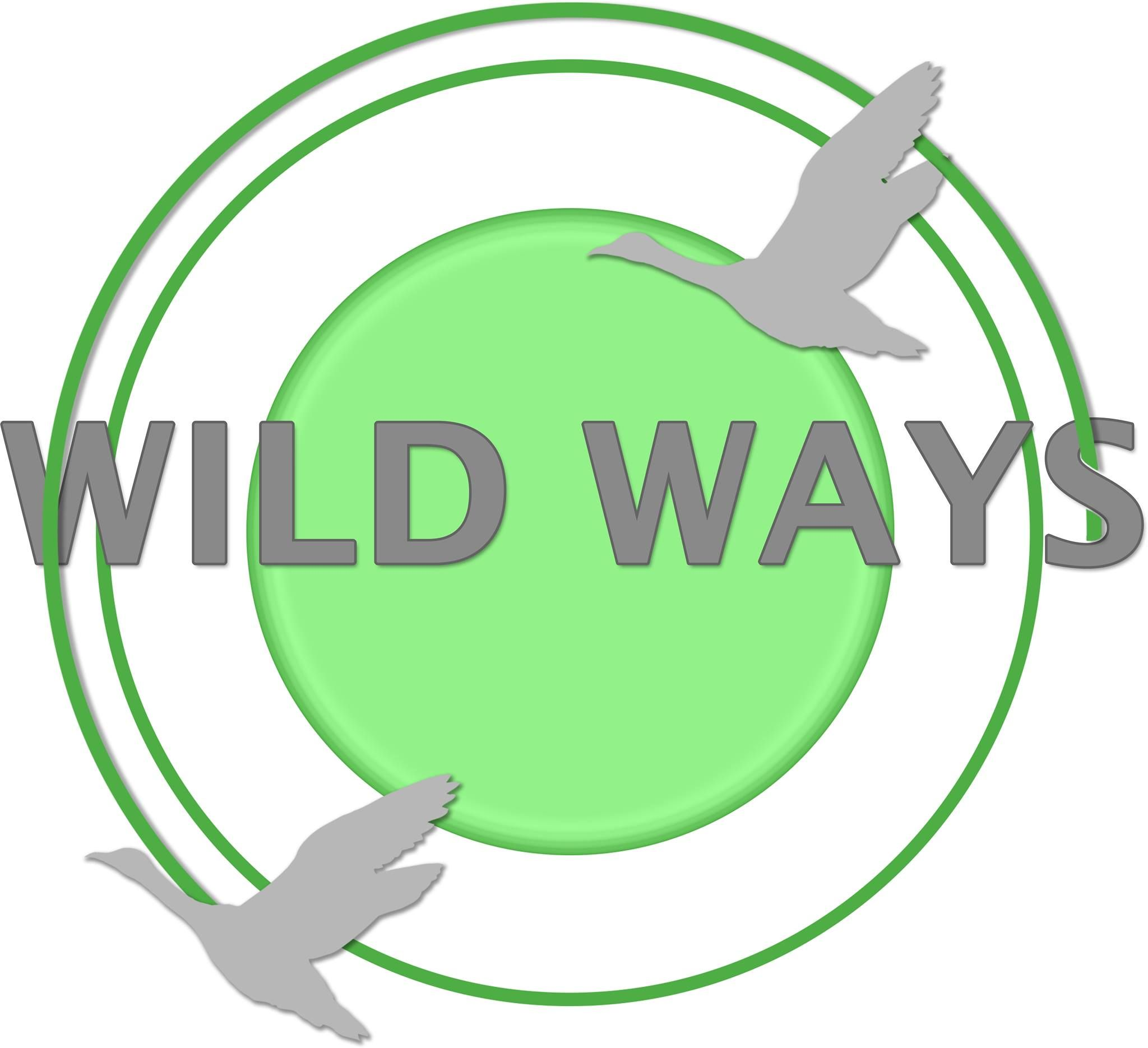 Logo Design For Wild Ways By Vernita Welch At Sales Squad Logos