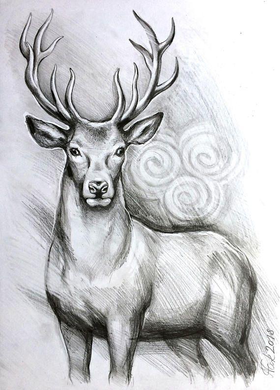 Photo of ORIGINAL Hirsch A3 Zeichnung, Bild, Illustration, deer art, stag pencil original drawing , gift, home decor