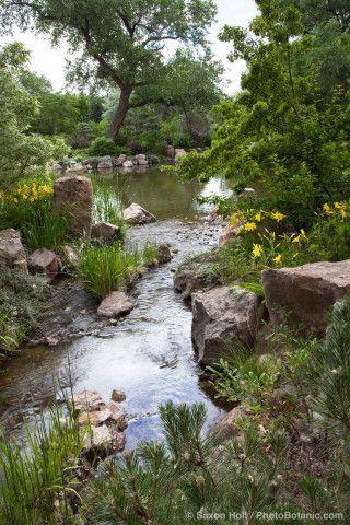 natural creek man ponds