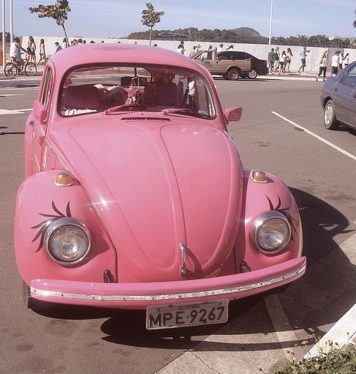 Pink Bug~My dream bug~! ;)