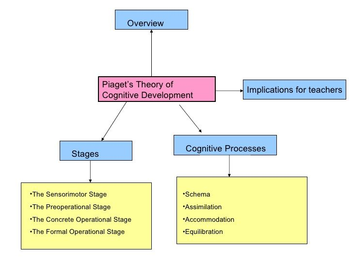 Piaget's Theory Of Cognitive Development | Jean Piaget | Pinterest