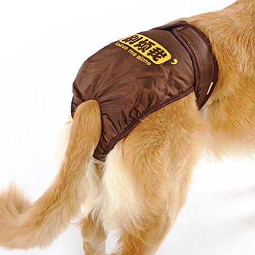 Pin On Dog Training Pads