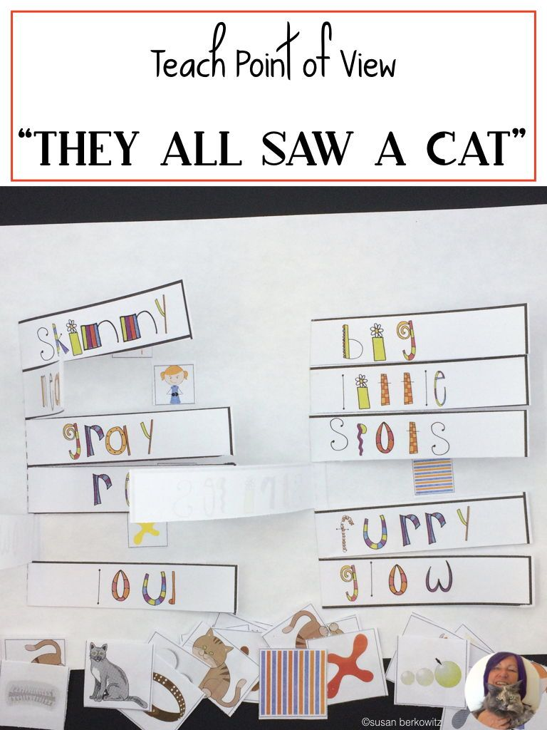 They All Saw A CAT Describing and Point of View for Speech