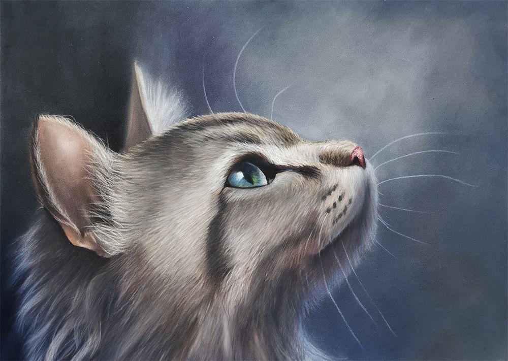 Eine Katze Zeichnen Mit Pastellstiften Malschule Kreativ Katze Zeichnen Pastell Stifte Kreative Zeichnungsideen