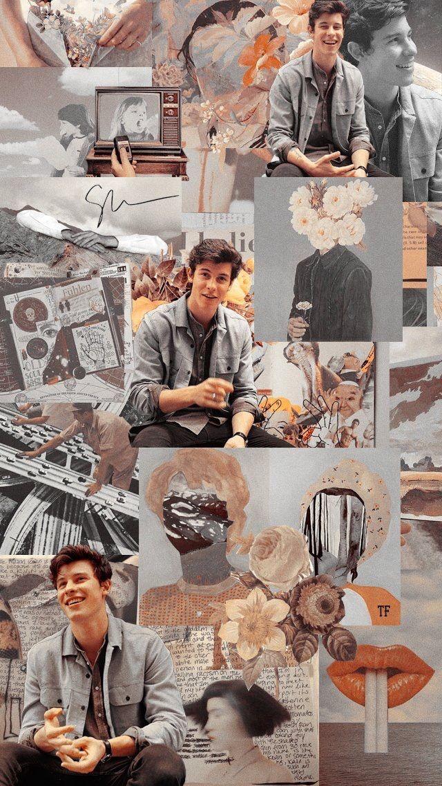 Pin Oleh Serenedaher Di Shawn Mendes Seni Grafis Warna Koral Seni