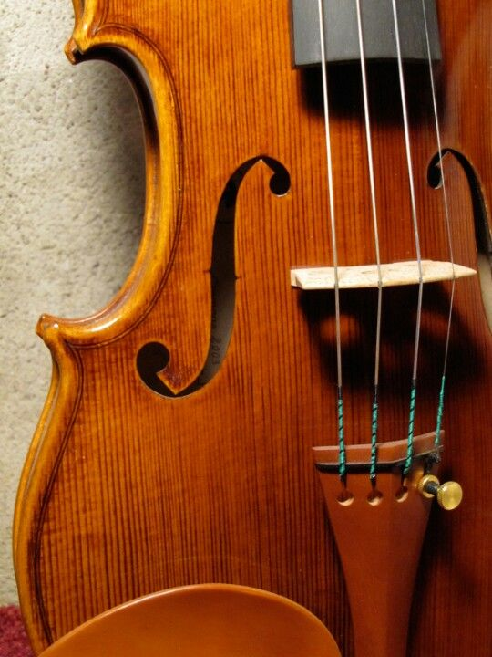 I want to fix my Viola and learn to play it again.