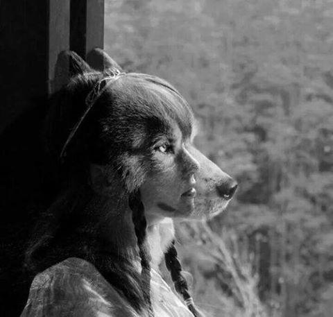 Una donna creativa era un pericolo perché dietro alle note che componeva, dietro alle pagine che scriveva, dietro alle poesie che recitava spuntava la coda della donna selvaggia, le orecchie a punta si rizzavano e, a malapena, essa riusciva a trattenere un ululato di piacere.