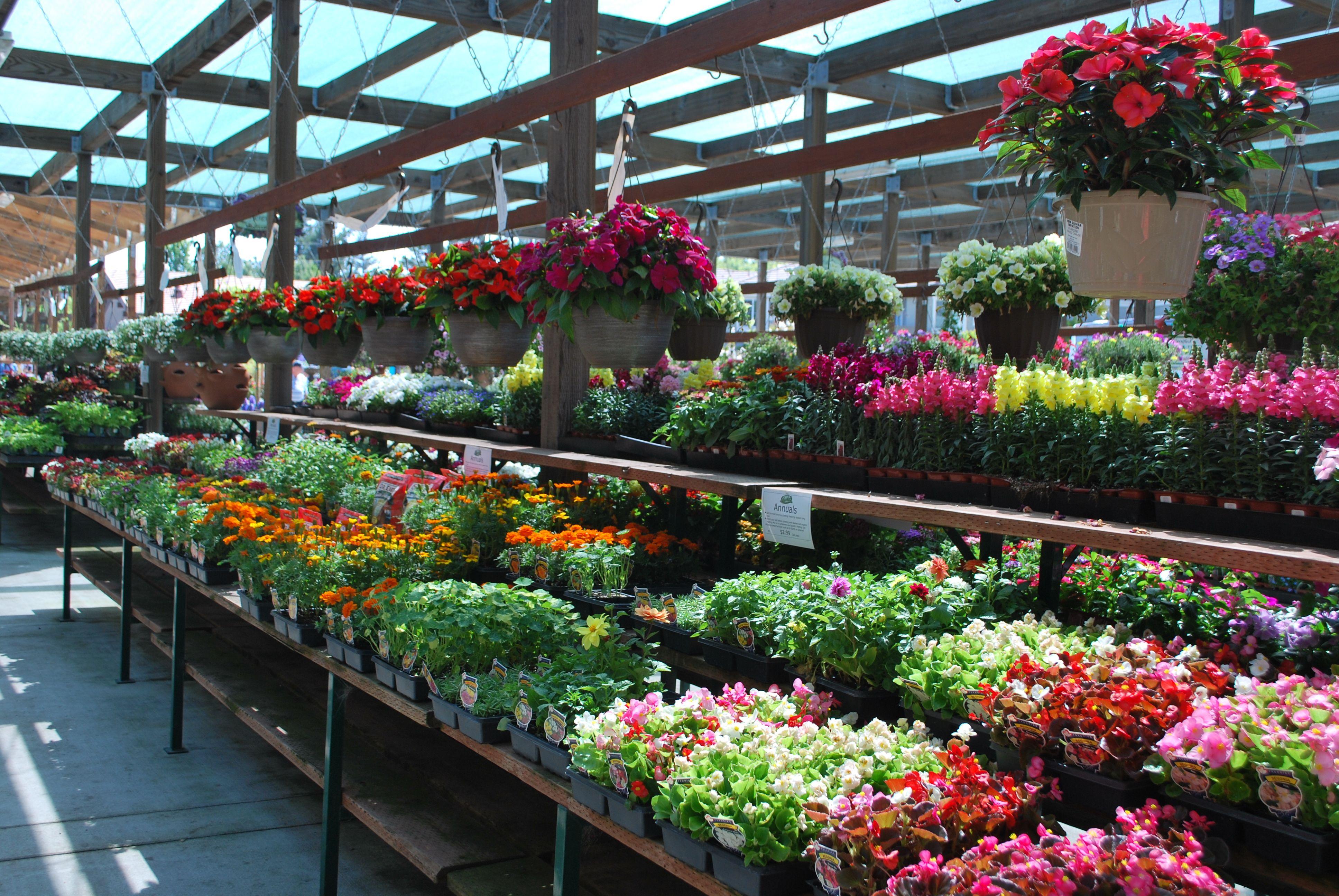 Navletu0027s Garden Centers