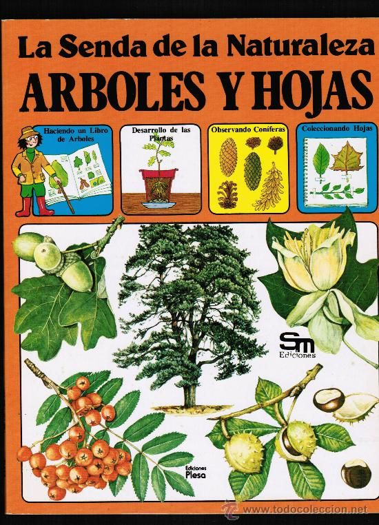 """Arboles y hojas"" -- Autora: Ingrid Selberg   Unha guía práctica da natureza.   Podes atopar este libro na biblioteca"