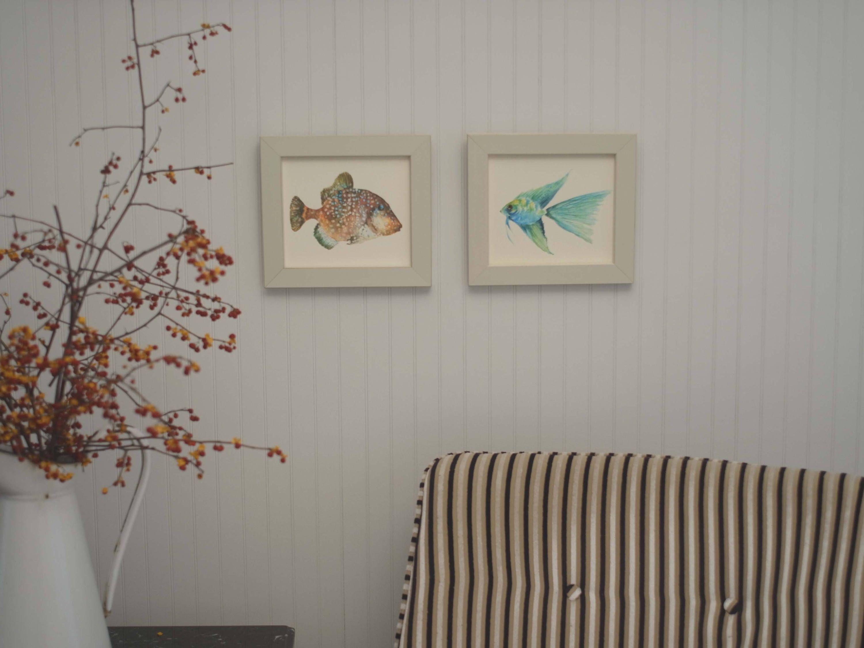 Framed watercolor tropical fish prints, trigger fish , angel fish ...