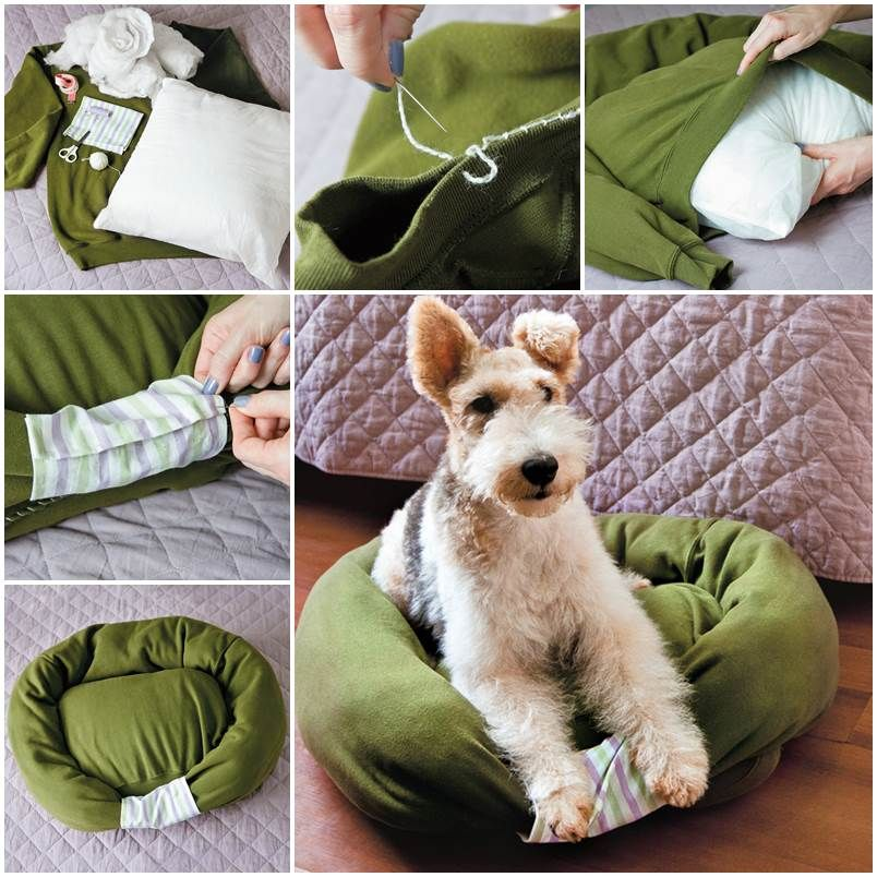 Diy Sweatshirt Pet Bed Very Cool Idea For That Old Sweater