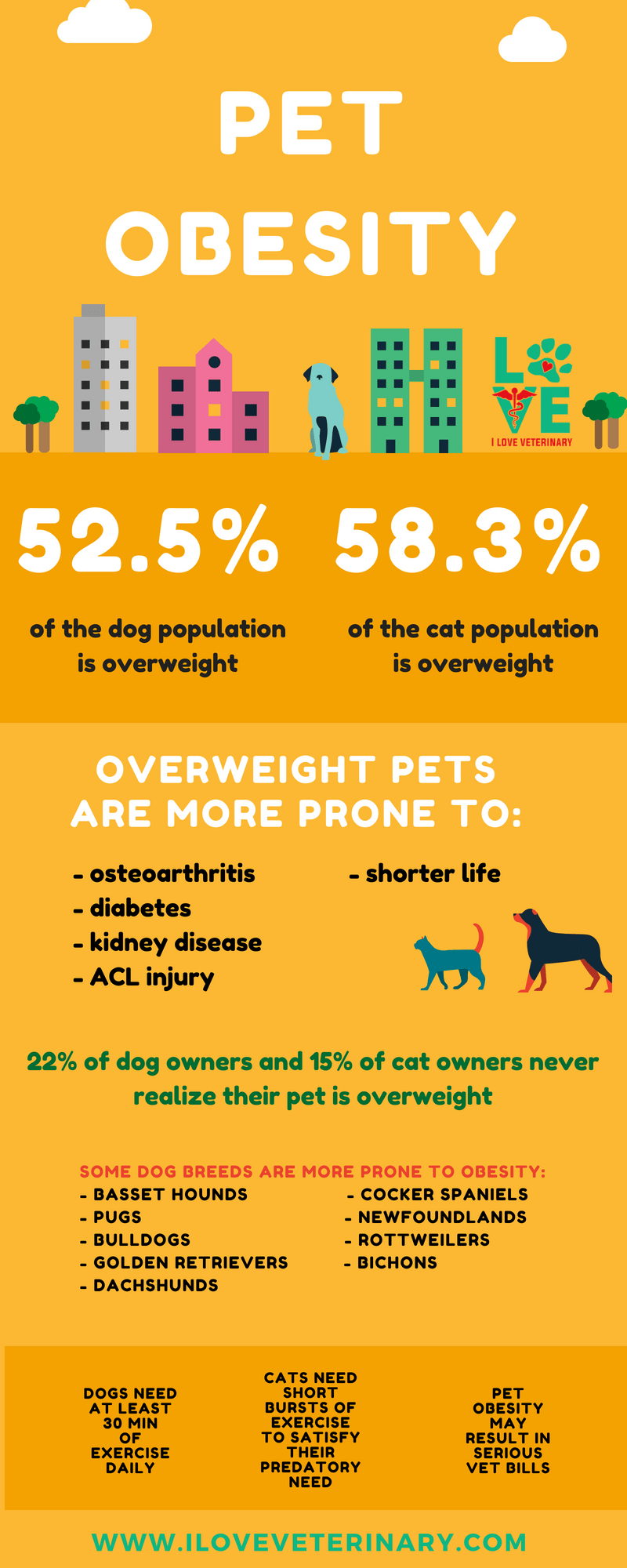 Pet Obesity I Love Veterinary Moving To England Moving To The Uk Travel Jobs