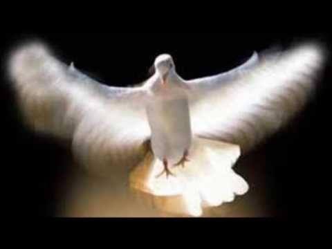 Alabanzas al Espiritu Santo con el Padre Dario Bencosme - YouTube