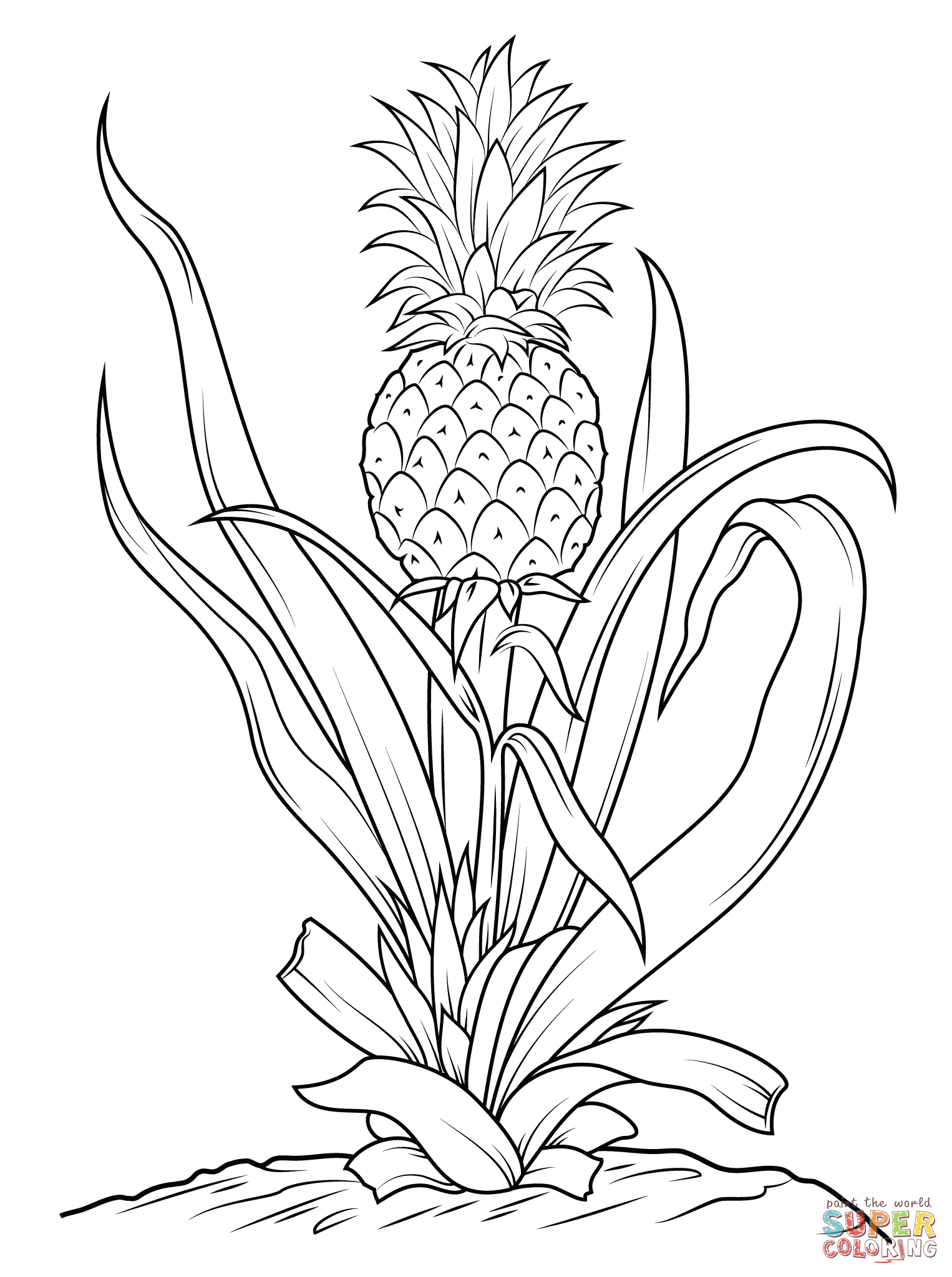 Click the Pineapple Pineapple drawing, Tree coloring