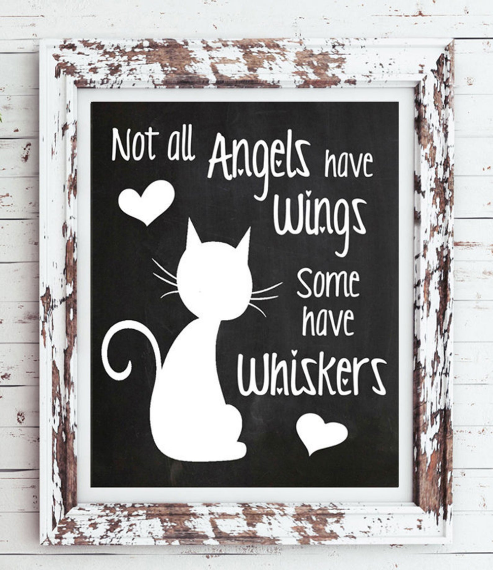 CAT Wall Art Not all ANGELS have Wings, Some have WHISKERS