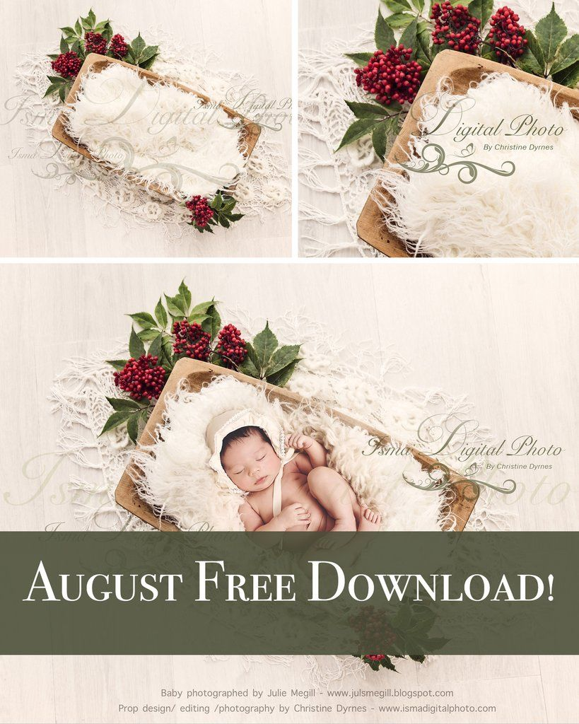 Free Download Trencher Bowls With Rowanberries Digital Backdrop Background Psd With Layers Digital Backdrops Digital Photography Backdrops Newborn Background