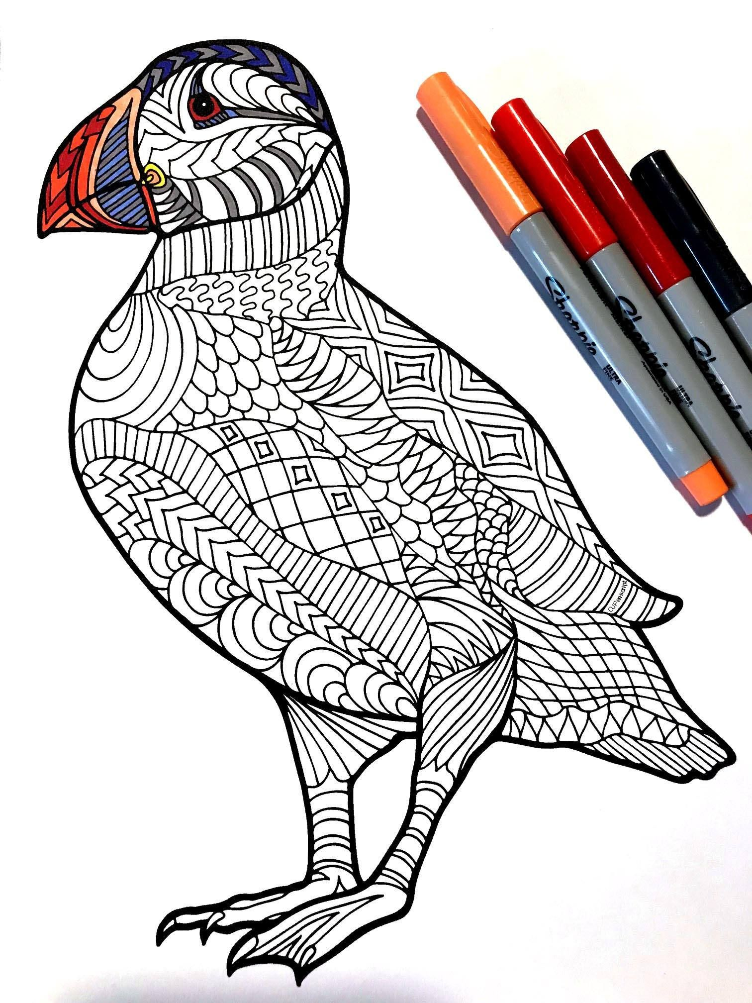 Puffin Pdf Zentangle Coloring Page Coloring Pages Zentangle