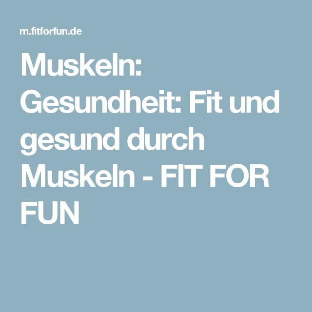 Muskeln: Gesundheit:  Fit und gesund durch Muskeln - FIT FOR FUN