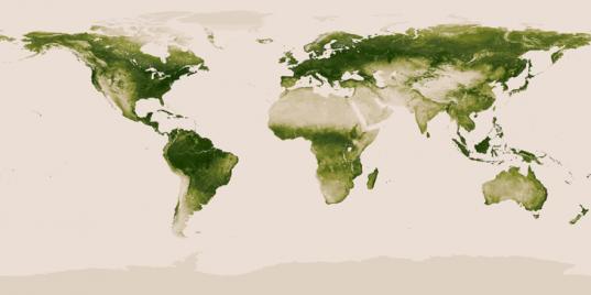 NOAA and NASA's Vegetation Map