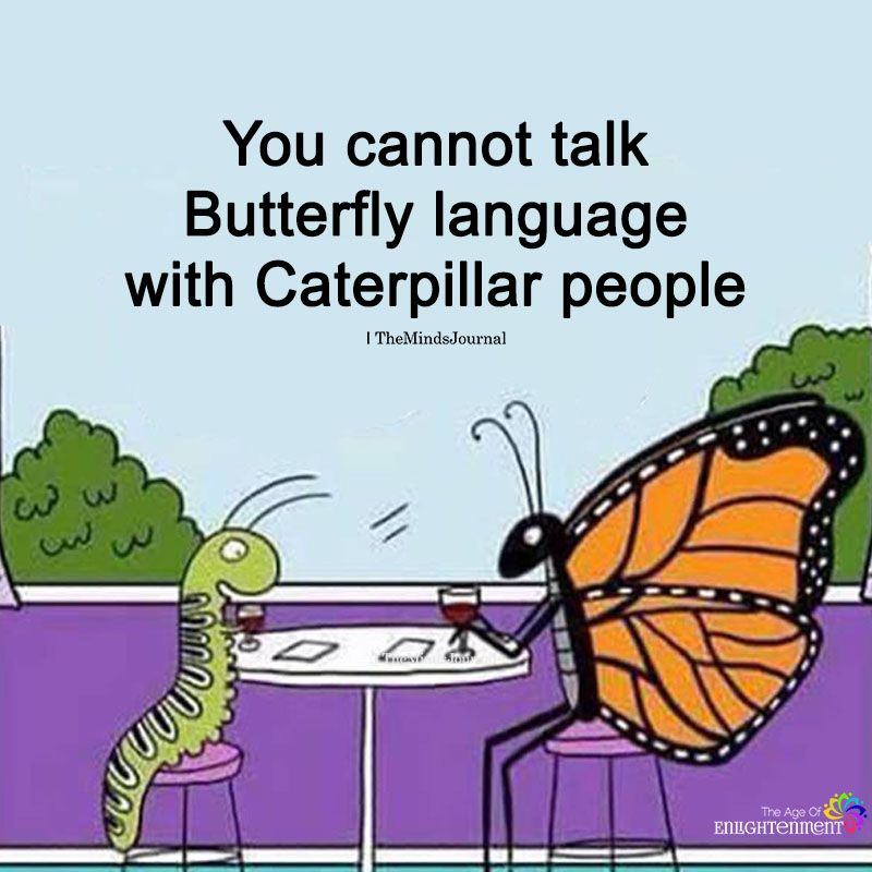 You Cannot Talk Butterfly Language Love quotes funny