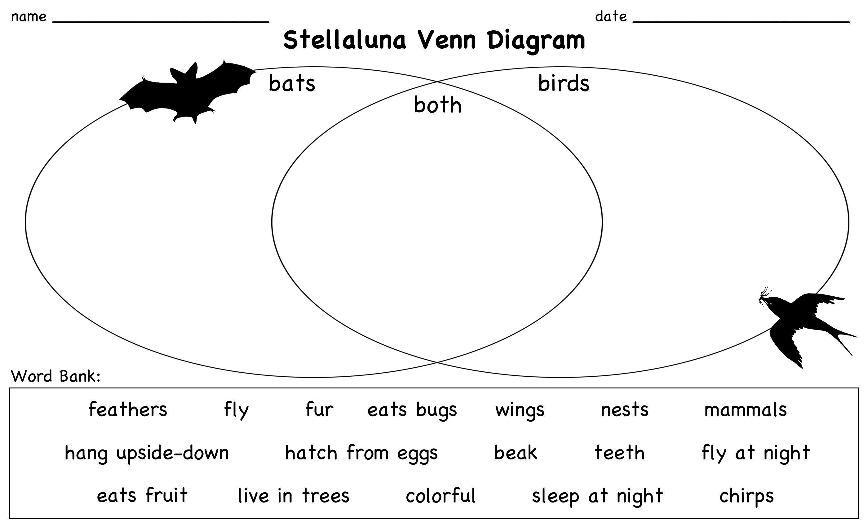 Stellaluna venn diagram lesson stellaluna venn diagrams and diagram have your students compare and contrast birds and bats with the help of the story stellaluna pooptronica Gallery