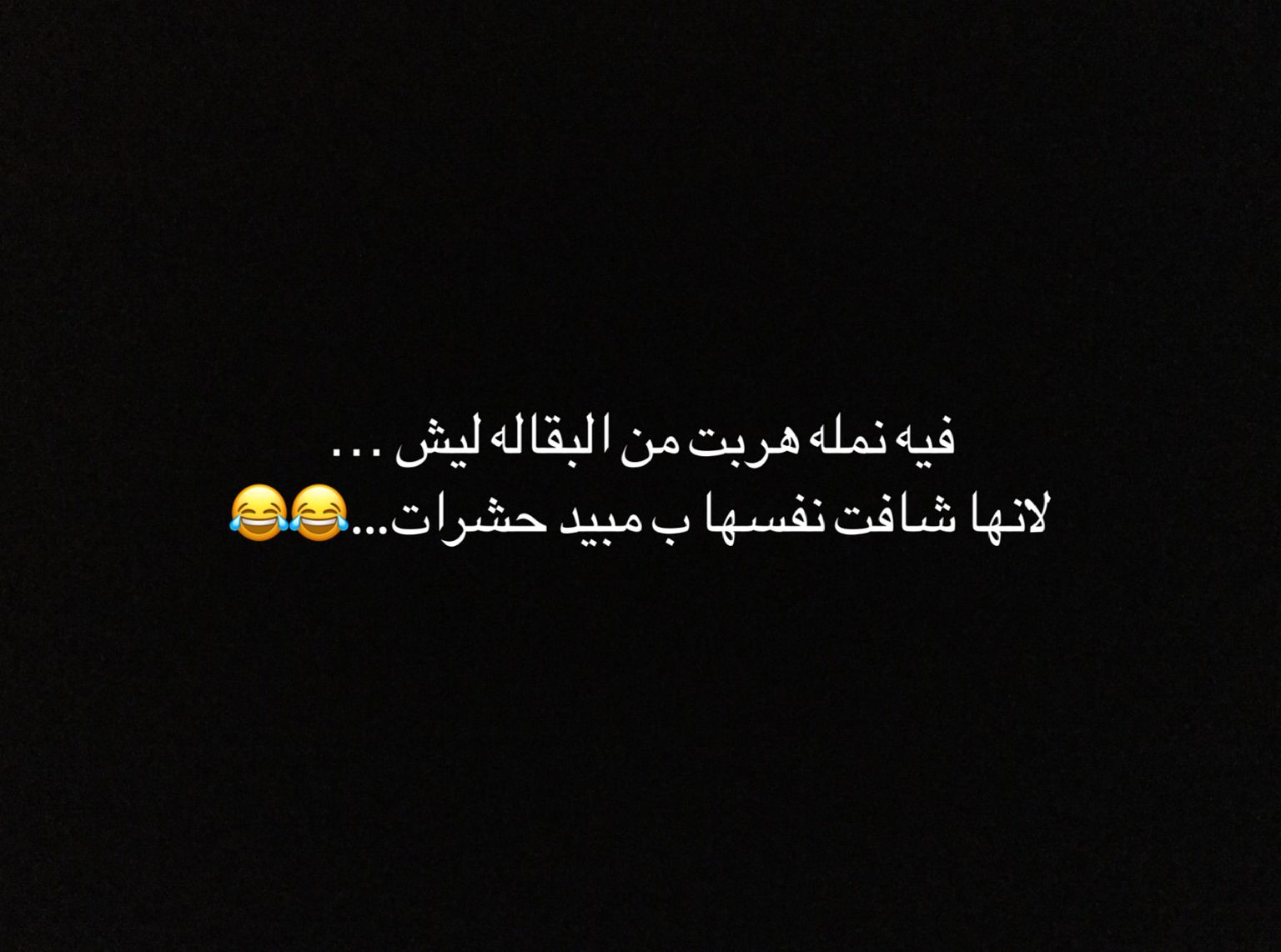 Pin By Basmah 2010 On نكت نمل وغيرها Funny Arabic Quotes Cute Disney Wallpaper Funny Quotes