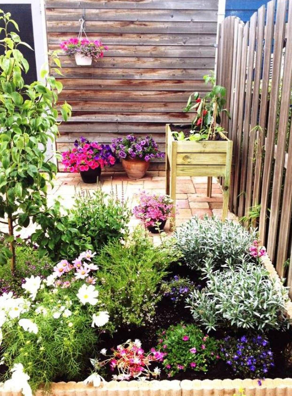 Gardening : Vegetable Garden Ideas, Vegetable Small Home ...