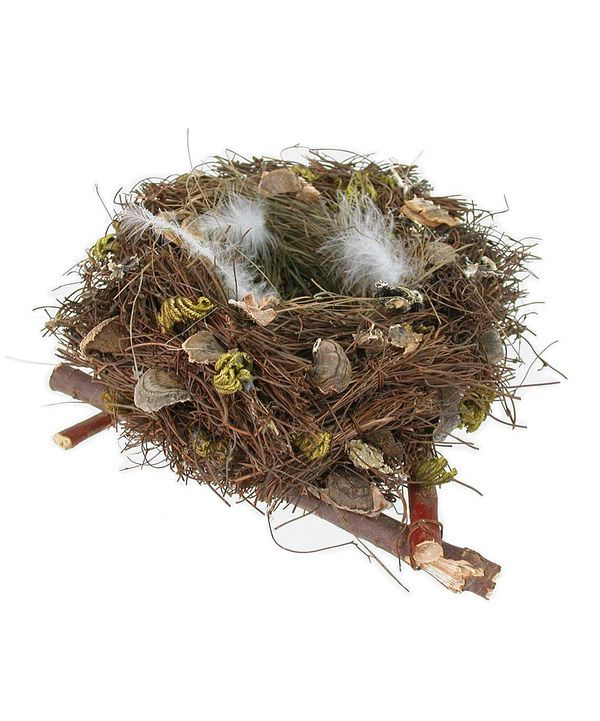Look what I found on #zulily! Natural Bird Nest Decor by Mills Floral Company #zulilyfinds