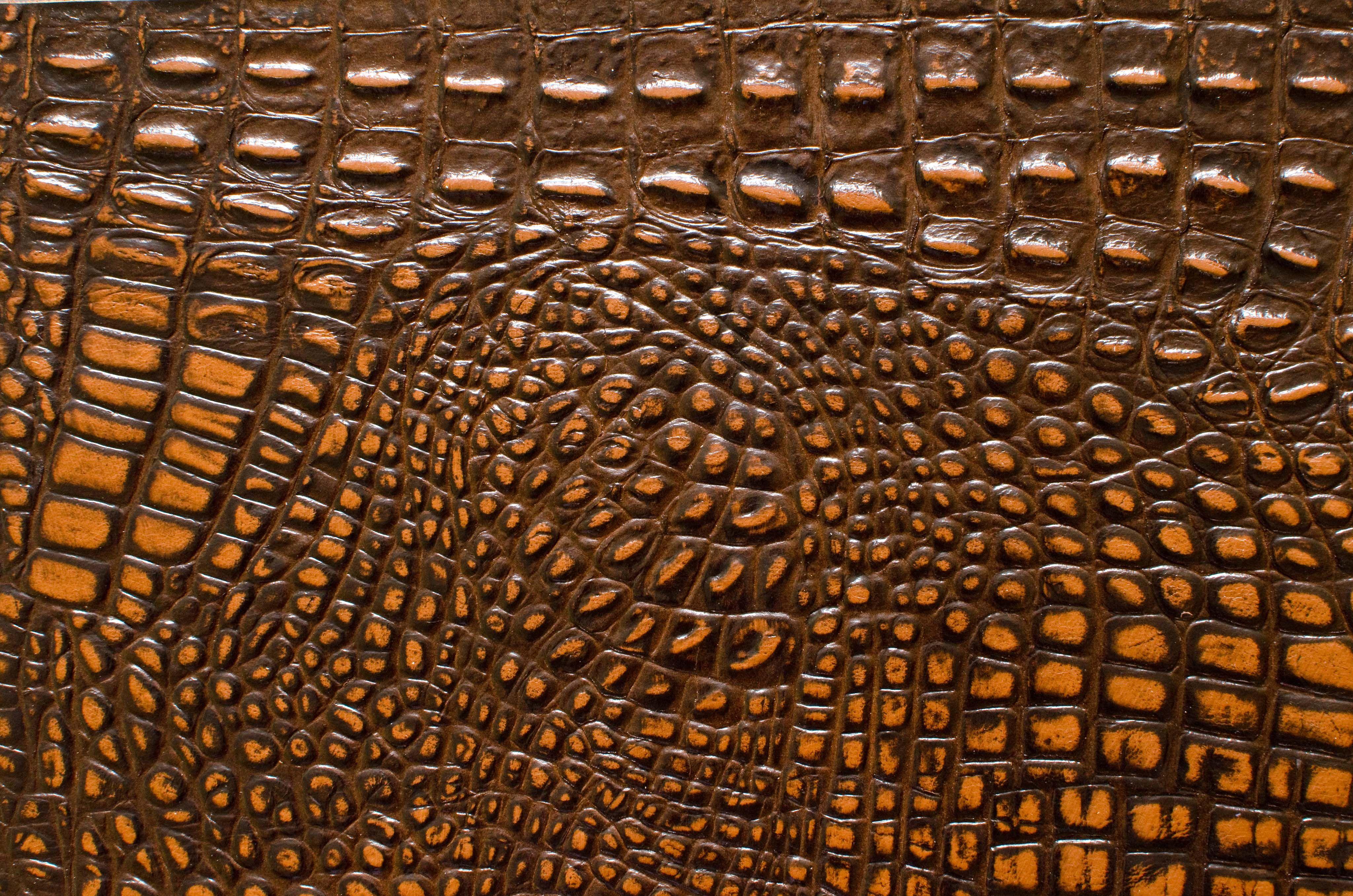 Browntan Alligator Printed Jpg 4096 2713 Textures Cuir Trame