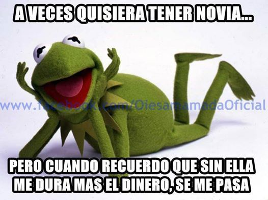 Frase De Un Tacaño Memes De La Rana Rana Gustavo Y Ranas