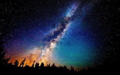 Milky Way Above The Fir Forest Wallpaper Wallpaper Hd
