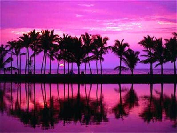 A Pink Hawaiian Sunset