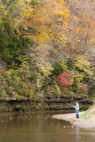 Apple River State Park Trip Guide