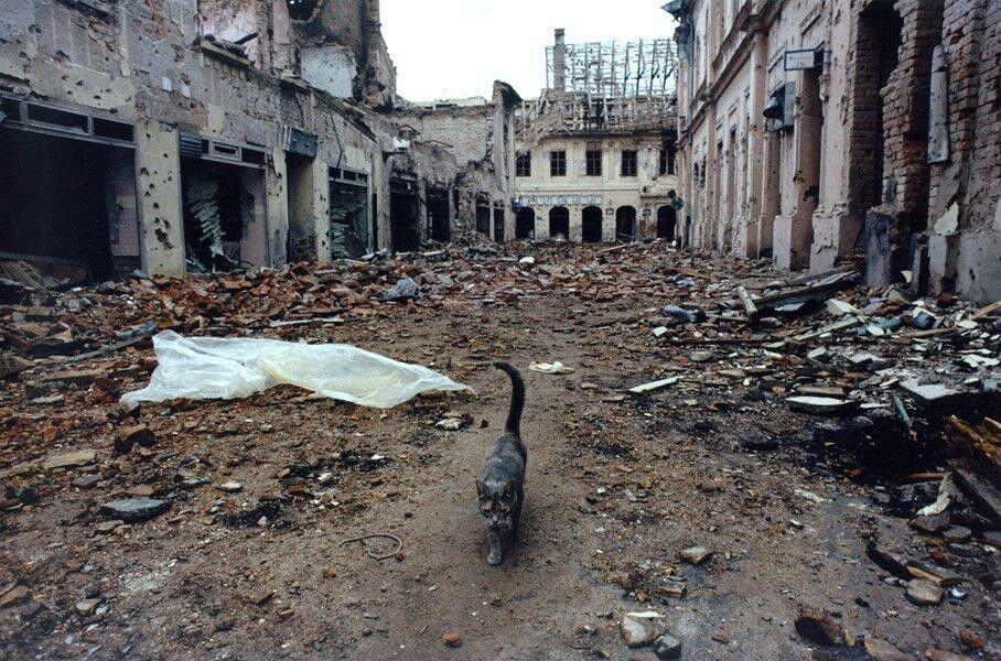 Image result for vukovar rat
