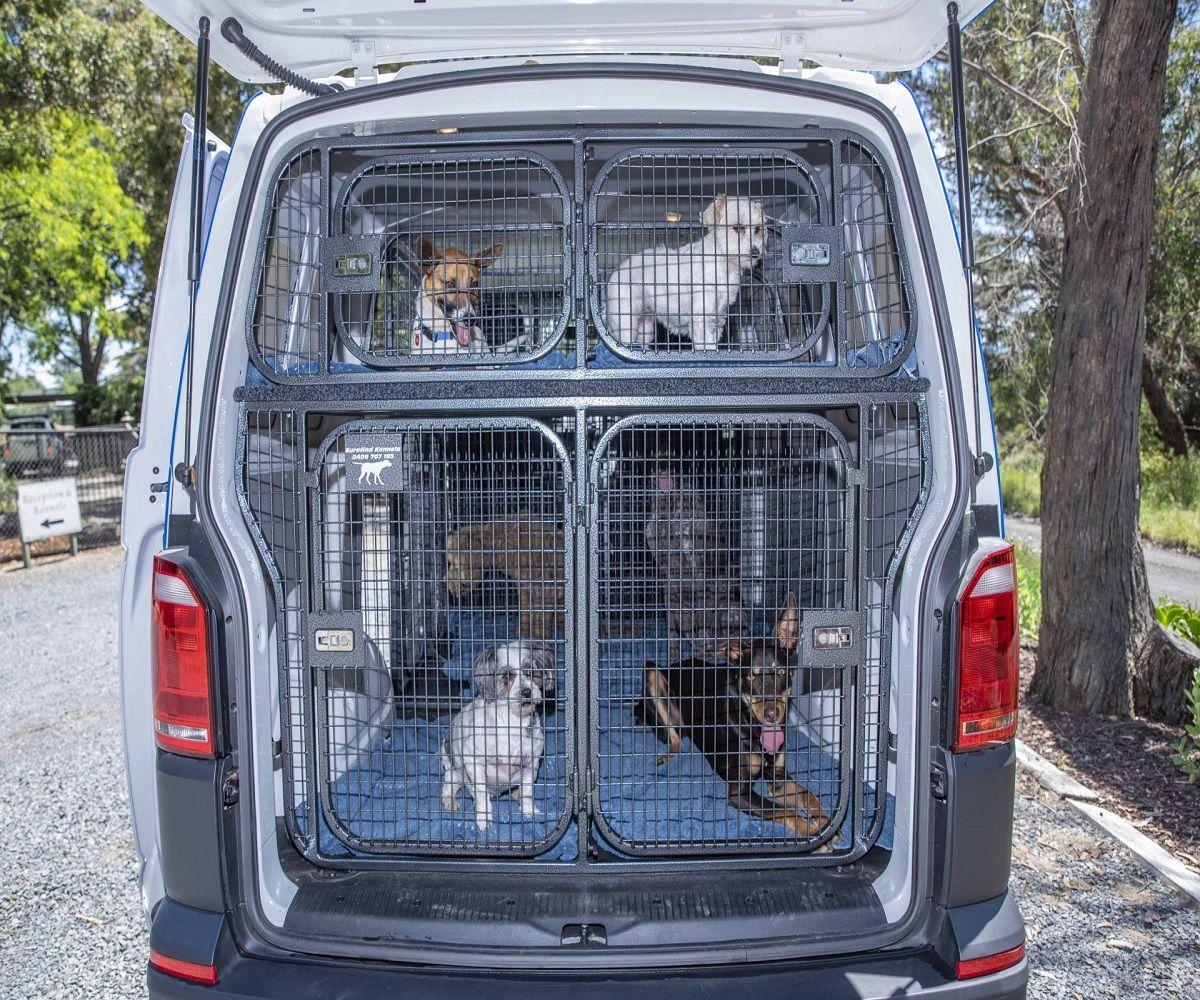 Pet Taxi in 2020 Pet taxi, Pets, Love your pet