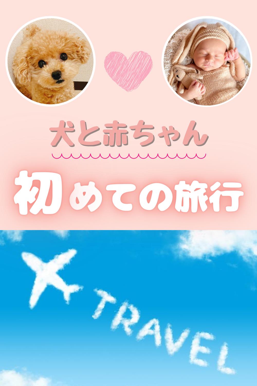 赤ちゃんと犬と一緒に旅行 犬 赤ちゃん 赤ちゃん 犬