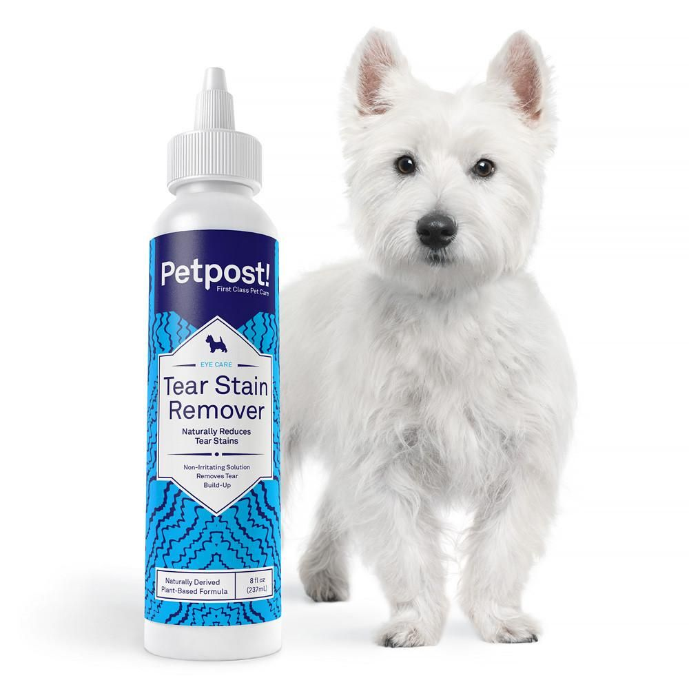 Tear Stain Remover Tear Stains Dog Tear Stains Dog Eyes