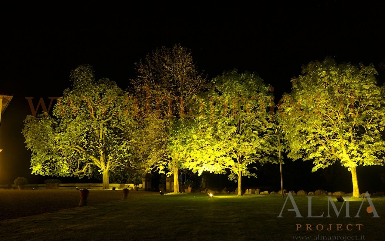 ALMA Project @ Villa Corsini a Mezzomonte - tree trees uplights
