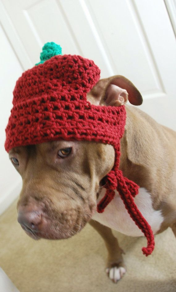 Apple Dog Hat for Large Dogs Crochet