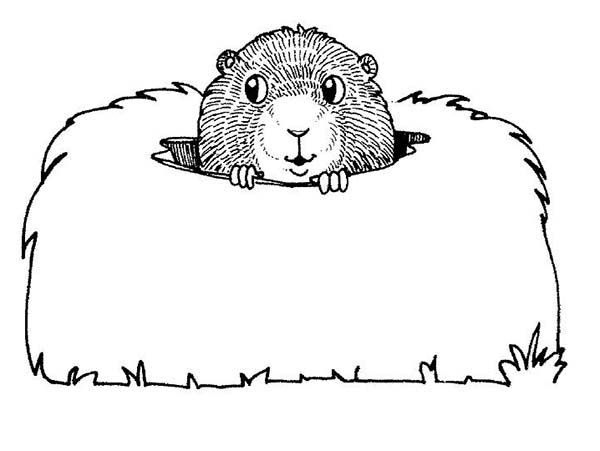 Happy Groundhog Day Coloring Pages 2015 Cards Greeting Cards