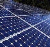 Nuevas Bio-Solar Panels están hechos de granos de algodón y ricino