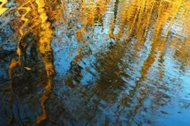 reflejos en el agua - Buscar con Google