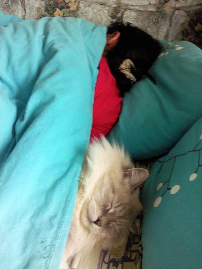 Муж застукал жену в постели