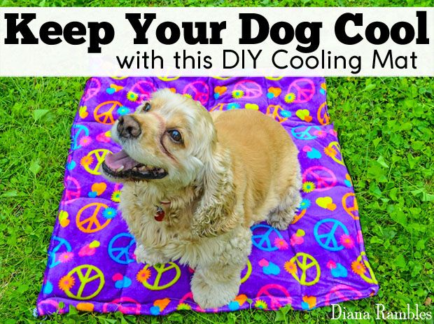 Diy Dog Cooling Mat Sewing Tutorial Need To Keep Your Dog Cooled Off Here Is A Diy Dog Cooling Mat Tutorial Dog Cooling Mat Dogs Diy Projects Diy Dog Stuff