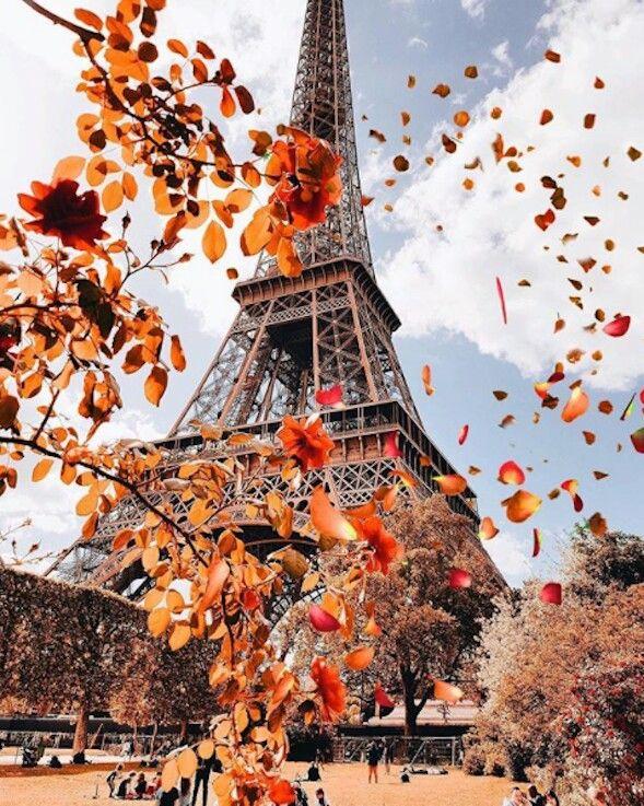 картинки осень в париже красивые это