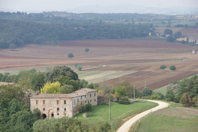 #Fields in #Tuscany