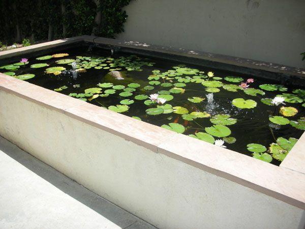 Rectangular Ponds Google Search Front Garden Landscape